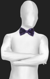 Regency Satin Bow Tie