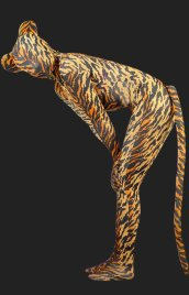 Tiger! Lycra Spandex Tigher Strips Unisex Zentai Suits